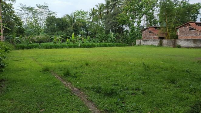 saat Waisak tiba dan pengunjung Borobudur membludak, area ini dijadikan area camping
