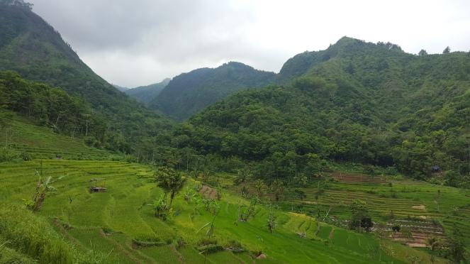 bukit-bukit di lereng Sumbing
