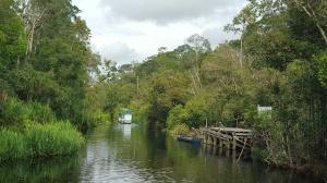 membelah sungai Sekonyer